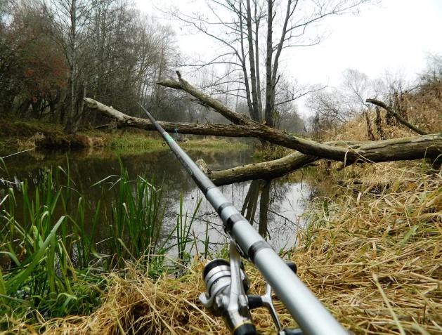 Весенняя рыбалка. Особенности рыбной ловли в мае, апреле и мае