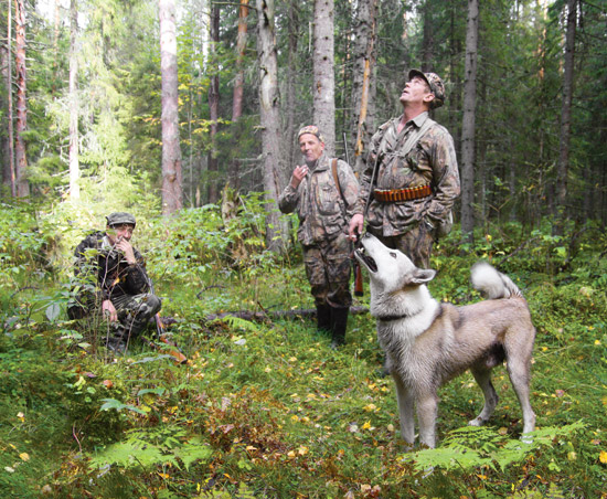 Напоминание пензенским охотникам: брать на охоту собак сейчас нельзя