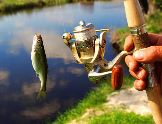 Летняя рыбалка в Калужской области в самом разгаре