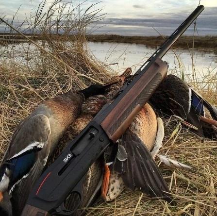 Охота на пернатых в Новосибирске стартует 29 августа