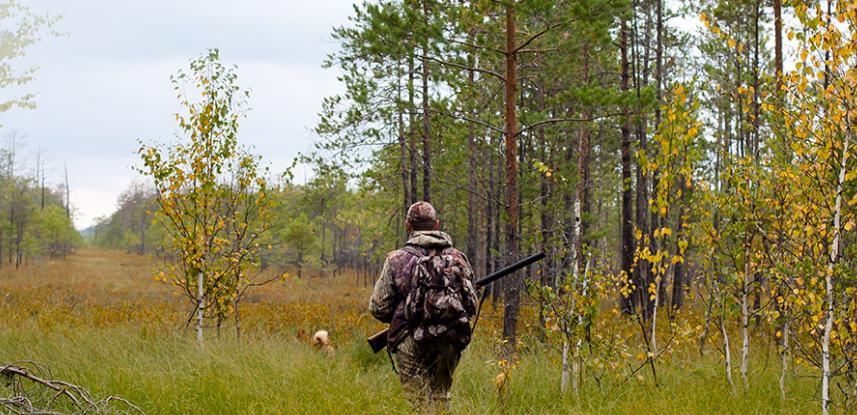 Охота в Воронеже не состоялась, но это временная мера