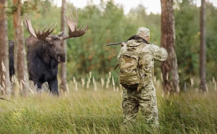 Охотник принял своего товарища по охоте за лося