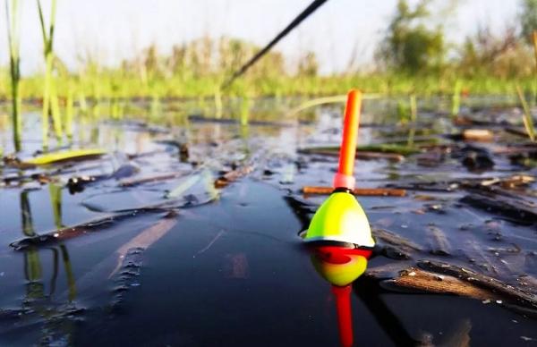 Карась в ноябре клюет ли рыба во второй половине ноября и стоит ли вообще идти на рыбалку