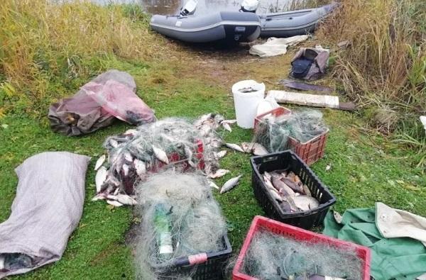 Очередные браконьеры стали фигурантами уголовных дел