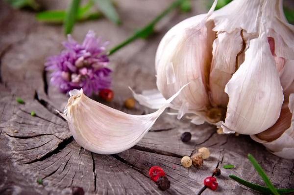 Приманка «Чудесный аромат» - бютжетная и эффективная. Дешево, но не сердито!