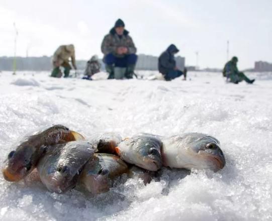 Рыбалка в Петербурге будет запрещена вплоть до середины апреля