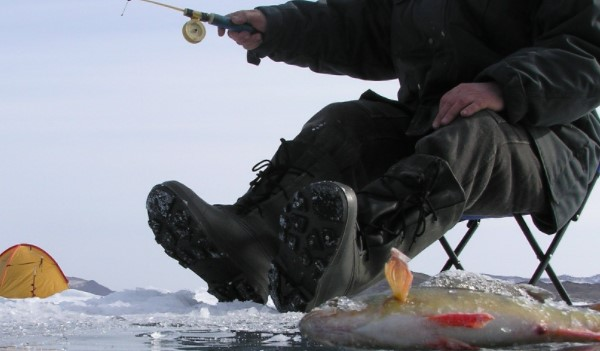 Ленинградских рыбаков будут штрафовать за подледный лов