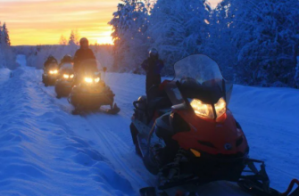 Браконьеры из Волгограда хотели уйти от полицейской погони на снегоходах