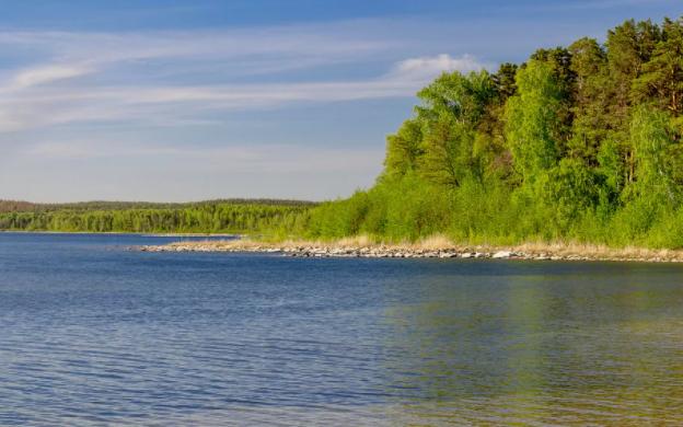 Браконьеры осадили Южноуральское озеро с помощью тралов
