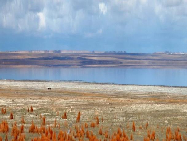 Рыбак из Омской области решил побывать на грязевом курорте ради рыбалки