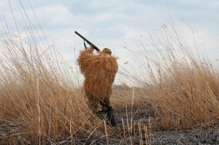 Охота в калужских лесных хозяйствах пройдет по новым правилам