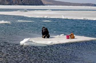 Отчаянные рыбаки, дрейфующие на льдинах