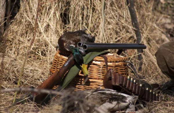 С середины апреля в Приамурье стартует охота на птиц