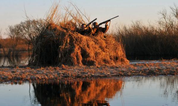 Охота на птиц в Казахстане все же состоится