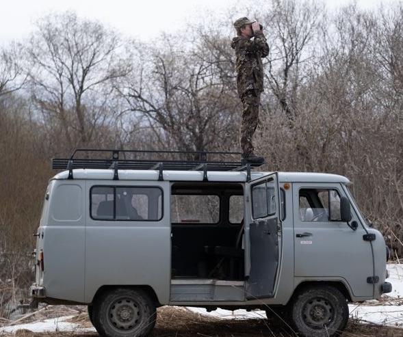 Ранняя охота за браконьерами началась на Сахалине