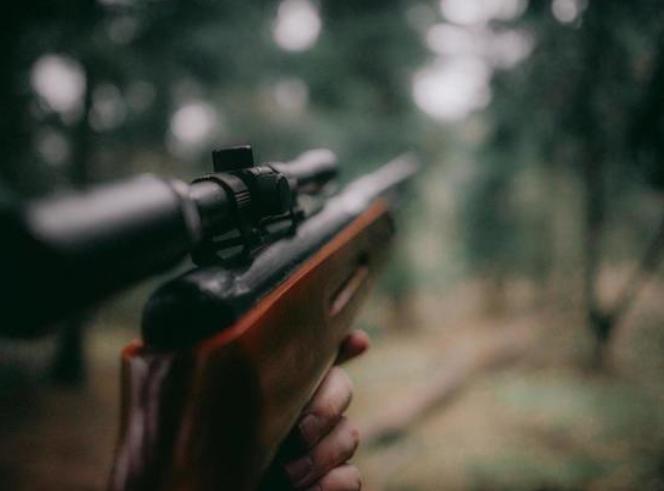 В Кемерово открывается охота на медведей