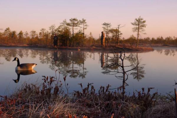 Во время охоты важно не только помнить о правилах, но и соблюдать их!