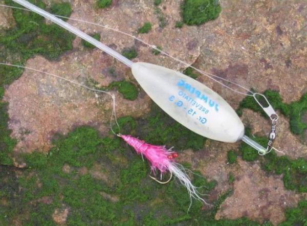 Бомбарда или же сбирулино – интересная снасть для Вашей рыбалки