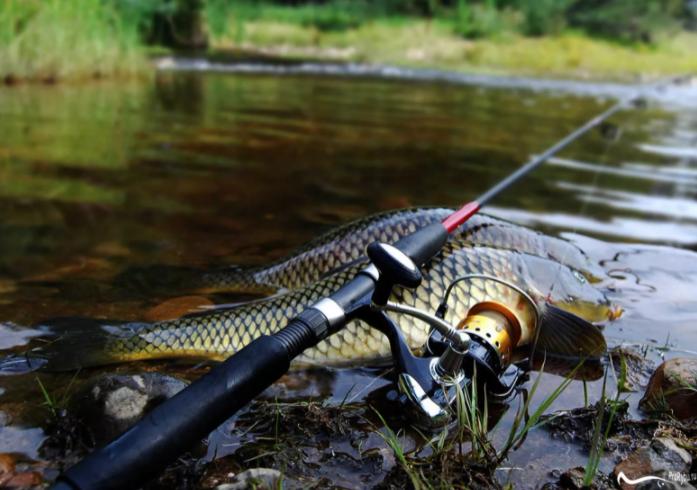 Дурные приметы рыбака и добрые наставления во время рыбалки.  Что не нарушают и во что верят рыбаки