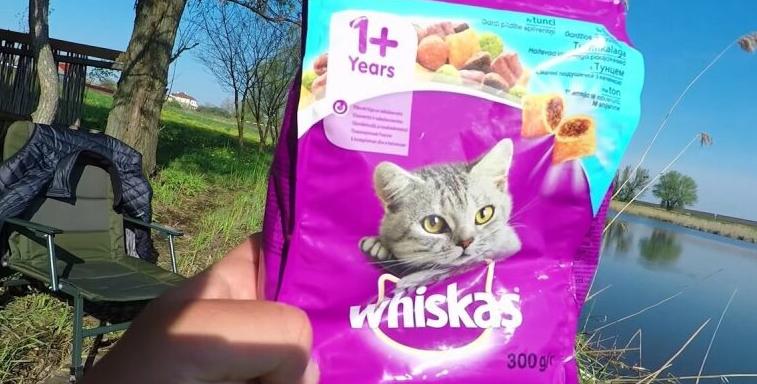 Корм для кошек Whiskas – Ваш новый приятель для продуктивного клева