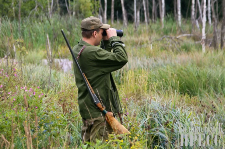 Охотники Сахалина не сдавшие свои разрешения в минувшем сезоне – не получат разрешения в будущем