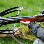 Охотники застрели кабана при помощи арбалета