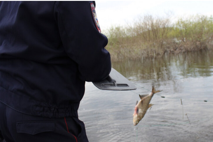 Рыбак из Смоленска задержан с острогом