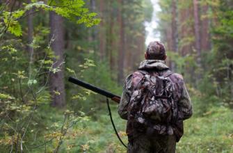Охота стартует в Курской области в ближайшее время