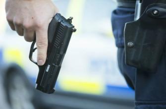 Полицейский спас сельскую школу от на нашествия медведя