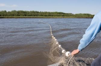Рыбалка обернулась не только богатым уловом, но и немалым штрафом