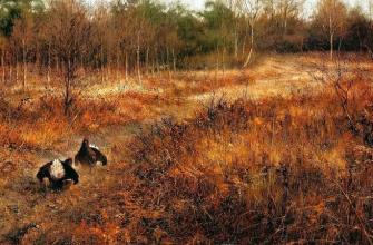 Охота в Нижегородской области стартует уже сегодня