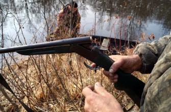 Охота на пушного зверя в Тамбове скоро откроется